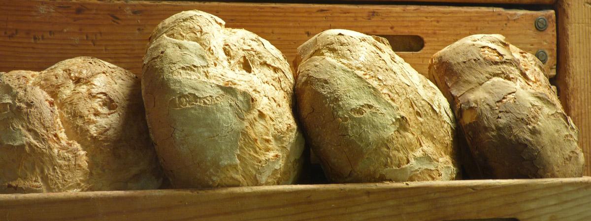 Receta de pan de payés de Cataluña | España Fascinante
