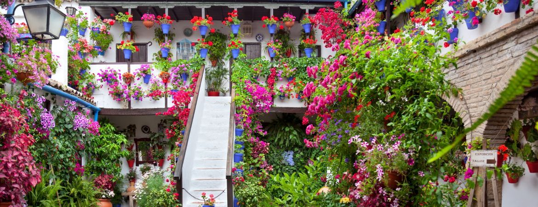 Los mejores patios de Córdoba