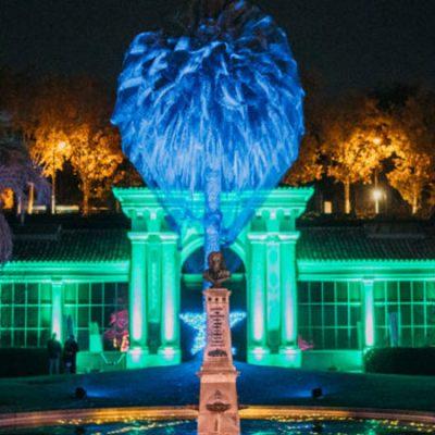 El Real Jardín Botánico se llena de luces de Navidad