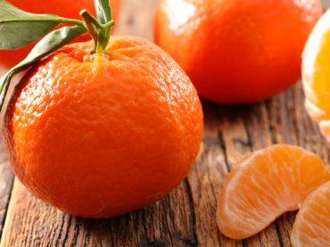 Clementinas de las Tierras del Ebro