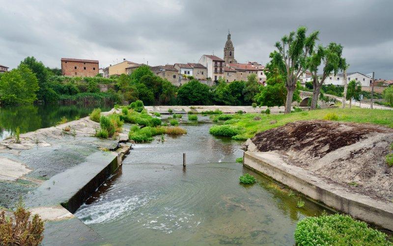 Río Zadorra y La Puebla de Arganzón