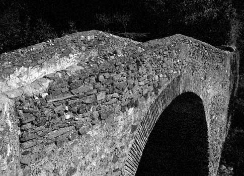 puente romano salares