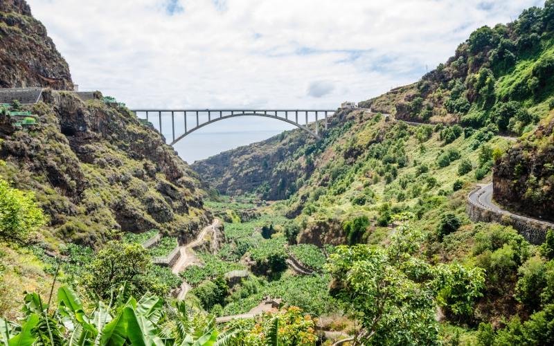 Puente de San Andrés y Sauces