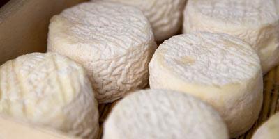 queso-de-cabra_canarias