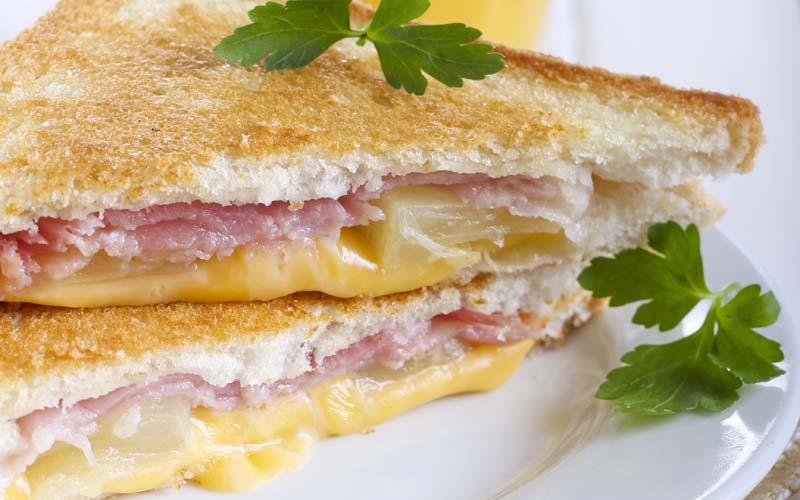 rellenos para sándwich