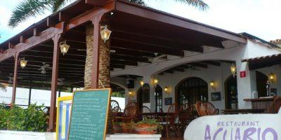 comer arenal castell restaurante acuario
