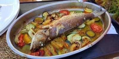 comer pescado mazagon dunas