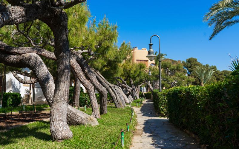 Passeig de la Ribera Roc de Sant Gaietà