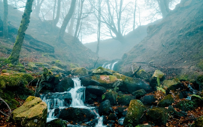 Ruta a la cascada de Belaustegi, Euskadi