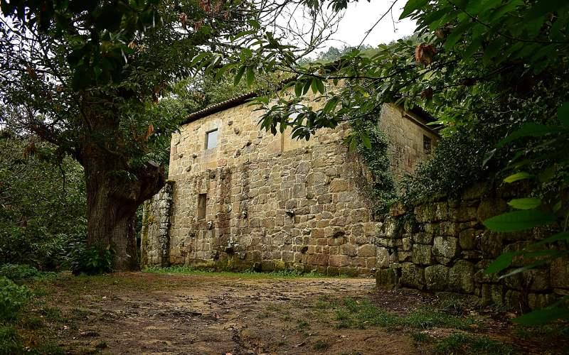 Pared del monasterio, entre los árboles