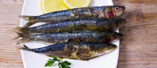 sardinas almunecar