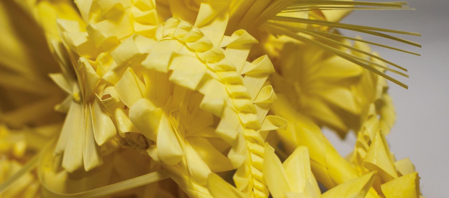 La artesanía viva de la palma blanca después del Domingo de Ramos