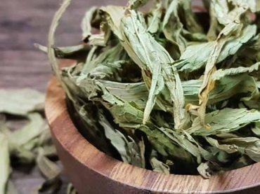 Stevia: el edulcorante natural saludable