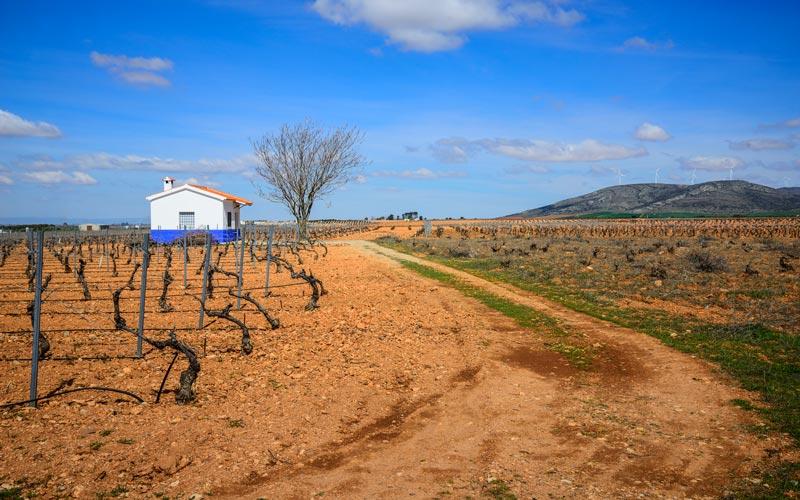 Lugares desconocidos de la Mancha: Valdepeñas