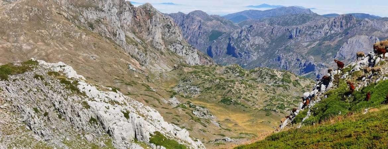 Cubres montañosas en Babia