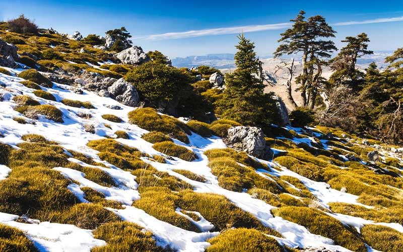 Sierra de las Nieves cerca de Casarabonela
