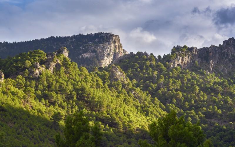 Sierra de las Nieves, Andalucia