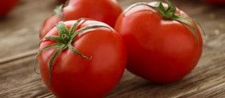 tomate tuinaje