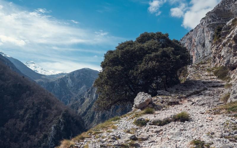 La ruta Tresviso-Urdón es una de las preferidas por los amantes de la montaña