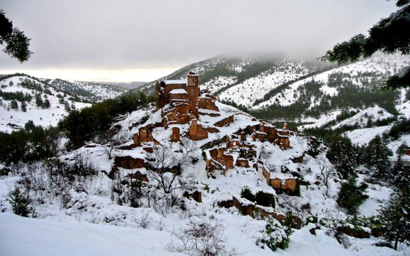 Turruncún invernal