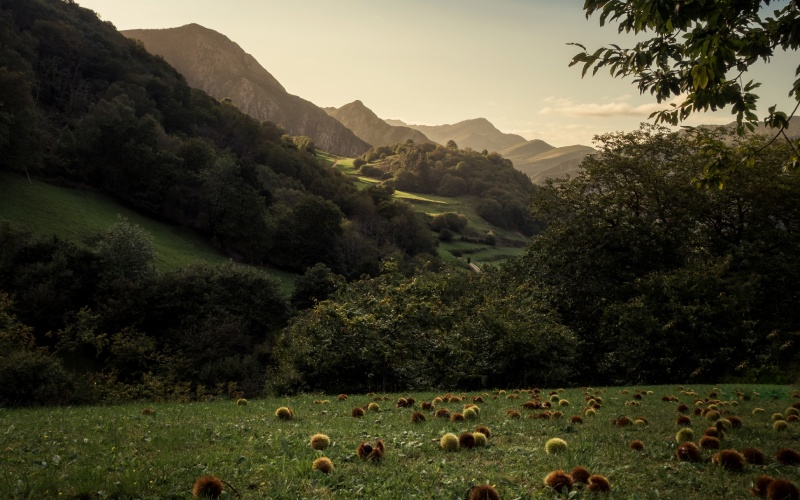 Valle de Ardisana, en Asturias