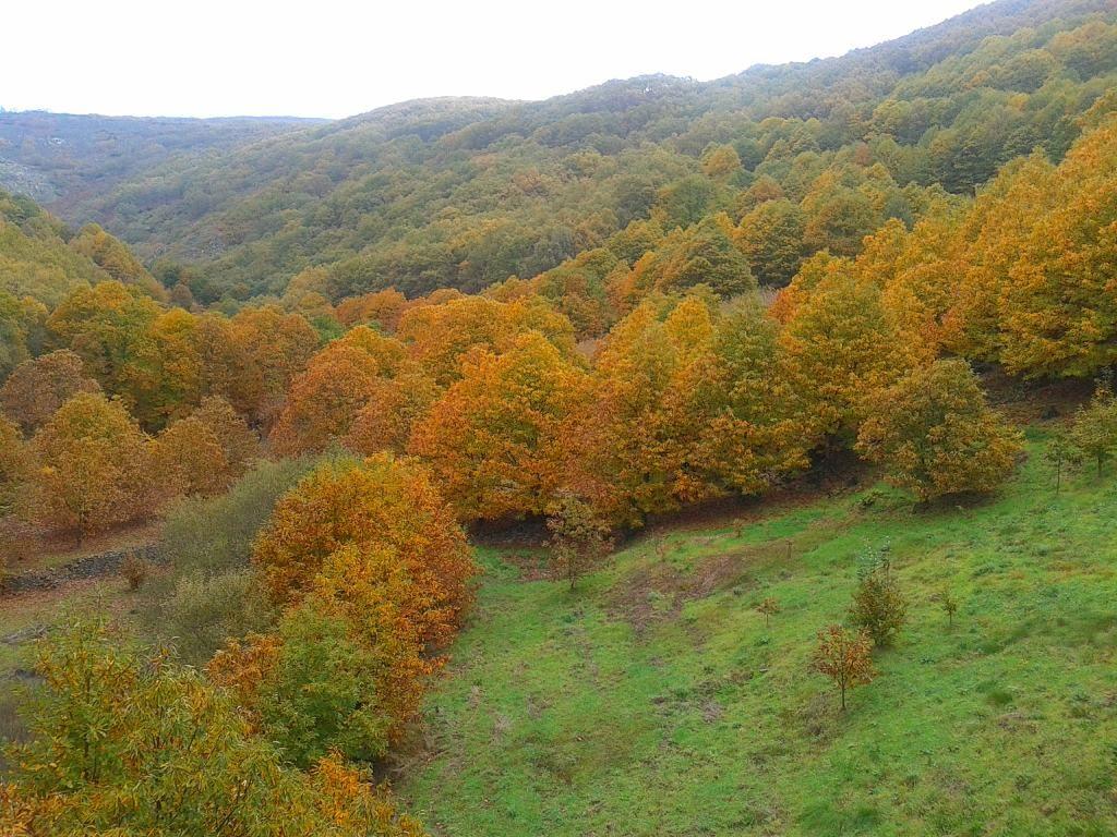 Valles de España para una escapada en otoño Jerte
