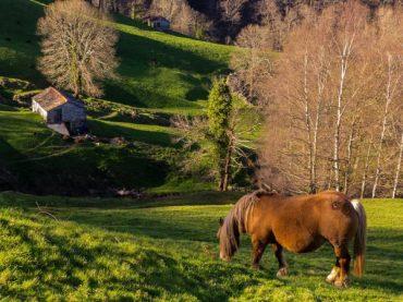 Ruta de tres días por la Cantabria de los Valles Pasiegos