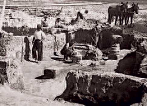 Restos de la Villa Romana de Almenara-Puras en Pago de la Calzadilla