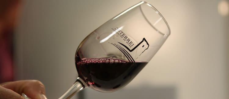 vino monterrey